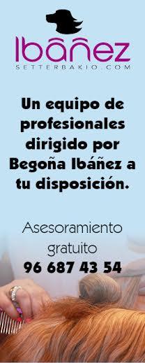 Un equipo de profesionales dirigido por Begoña Ibáñez a tu disposición. Asesoramiento gratuito