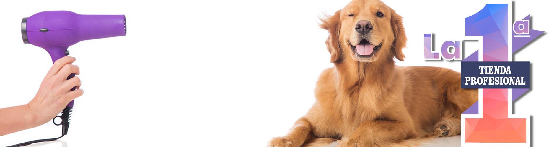 Tienda profesional perros Setterbakio